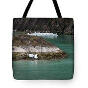 Alaska_00047 Tote Bag