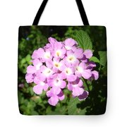 Australia - Pink Flowers Tote Bag