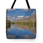 47- Everglades Serenity Tote Bag