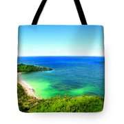 Landscape Lighting Tote Bag