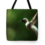 4753 - Ruby-throated Hummingbird Tote Bag