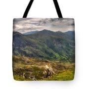 Landscape Definition Tote Bag