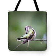 4864-002 - Ruby-throated Hummingbird Tote Bag