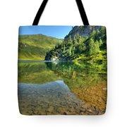 Art Landscapes Tote Bag