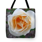 Australia - White Rose Flower Tote Bag