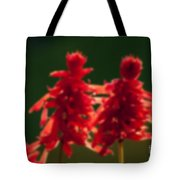 Blurred Seasonal Flower With Dark Background Tote Bag