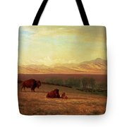 Buffalo On The Plains Tote Bag