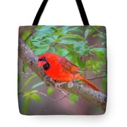 Cardinal Birds Hanging Out On A Tree Tote Bag