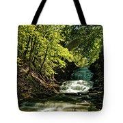 Cascadilla Gorge Falls Tote Bag