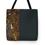 Close Up Tote Bag