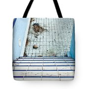 Derelict Swimming Pool Tote Bag