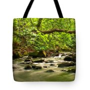 Framed Landscape Tote Bag