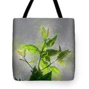 Fresh Growth Of Healthy Green Leafs  Tote Bag