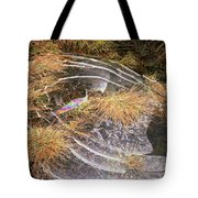 5. Ice Prismatics In Grass 2, Loch Tulla Tote Bag