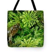 Mehu�n Green Frog Tote Bag
