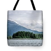 Mountain Range Scenes In June Around Juneau Alaska Tote Bag