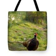 mr Pheasant Tote Bag