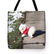 My Small Dog Tote Bag