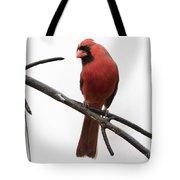 Northern Cardinal Tote Bag