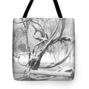 Park During Heavy Snowfall  Tote Bag