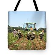 Peanut Harvest Tote Bag