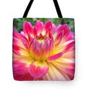Pink And Yellow Dahlia Tote Bag