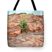 Sandstone Color In Valley Of Fire Tote Bag