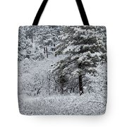 Snowstorm In The Pike National Forest Tote Bag