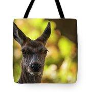Stunning Hind Doe Red Deer Cervus Elaphus In Dappled Sunlight Fo Tote Bag