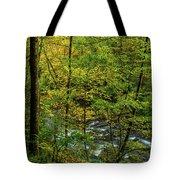 North Carolina Fall Colors Tote Bag