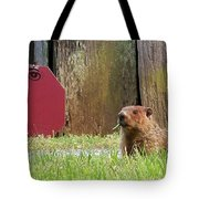 5002-groundhog Tote Bag