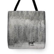 4147 Tote Bag