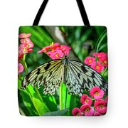 5050- Butterfly Tote Bag
