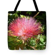 Australia - Red Caliandra Flower Tote Bag
