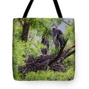 Birds Tote Bag