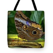 5113- Butterfly Tote Bag