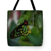 5156- Butterfly Tote Bag