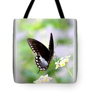 5276-001- Butterfly - Swallowtail Tote Bag