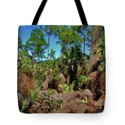 55- Everglades Afternoon Tote Bag