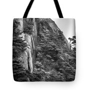 5782- Yellow Mountains Black And White Tote Bag