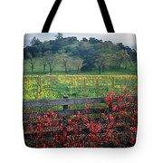 5b6301 Vineyards Of Color Tote Bag
