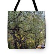 5th Avenue  Tote Bag