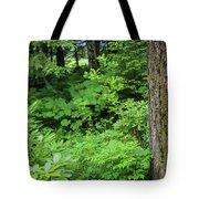 Alaska_00006 Tote Bag