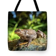 Amphibian, Common British Toad / Frog Tote Bag