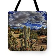 Anza-borrego Desert State Park Tote Bag