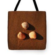 Beach Shells Tote Bag