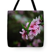 Blossoming Peach Flowers Closeup Tote Bag