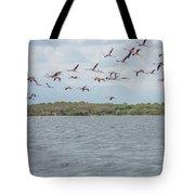 Colombia Sanctuary Of Flamingos Near Riohacha Tote Bag