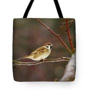 Eurasian Tree Sparrow Tote Bag