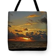 6- Juno Beach Tote Bag